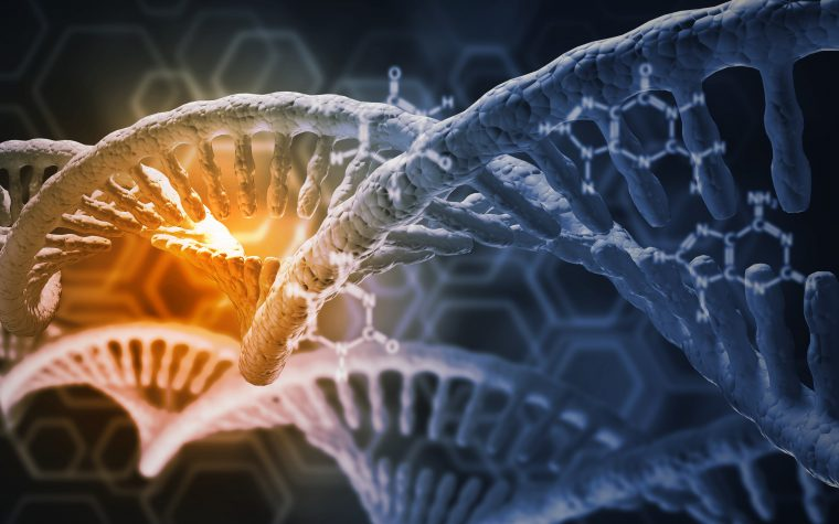 Genetic studies for Rett syndrome